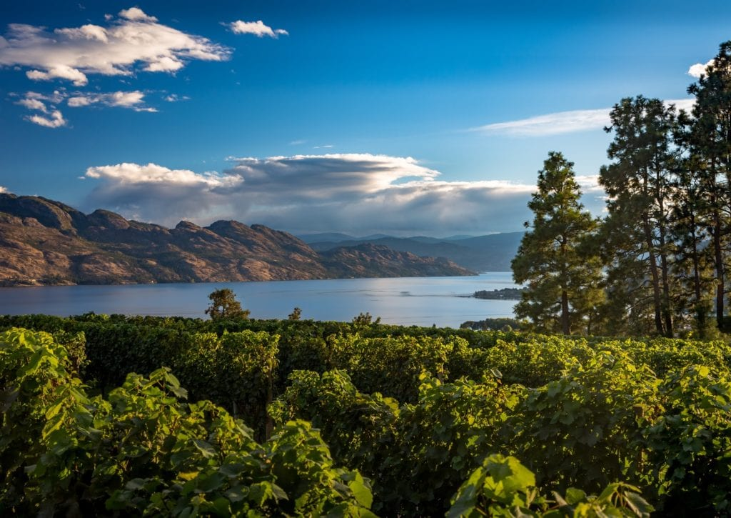 View of Kelowna on a summer day, highlighting custom home features for okanagan summer