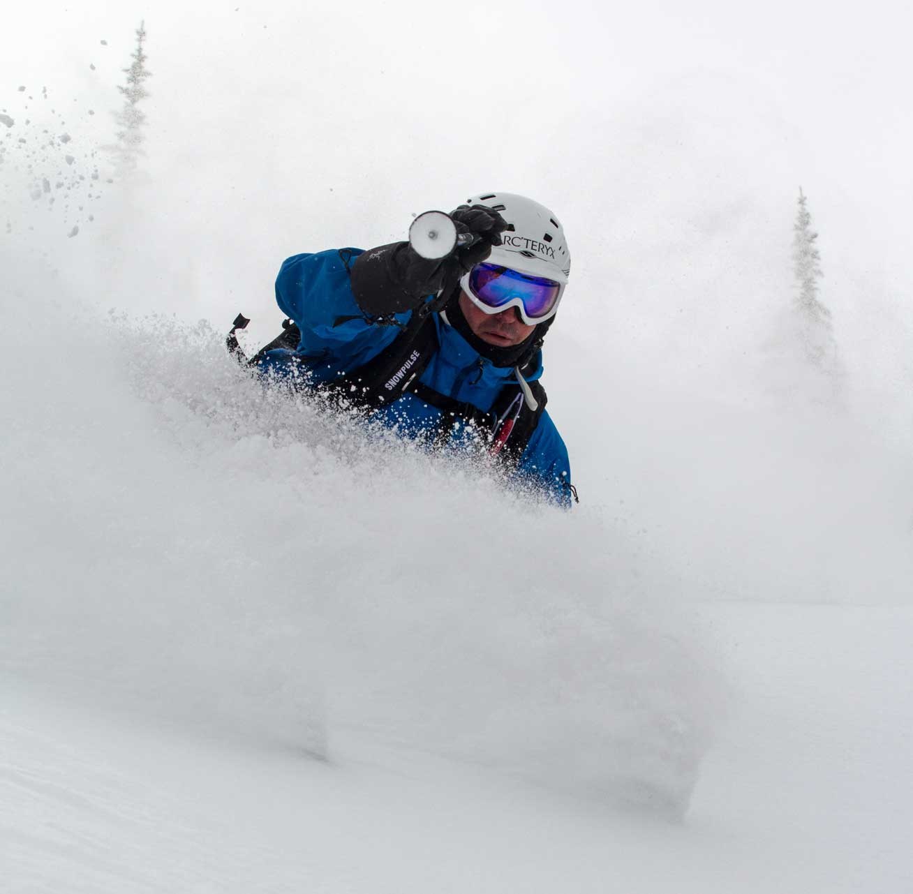 Skier in powdery snow with foggy trees in background