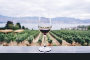 Kelowna vineyard with glass of wine in foreground and okanagan valley and lake in background, highlight activities that a central summer cottage alternative offers