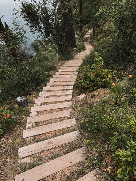 Steps going down in the forest, while Kelowna hiking at Knox Mountain on the Lochview Trail